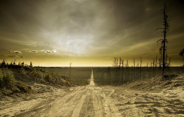 písčitá cesta